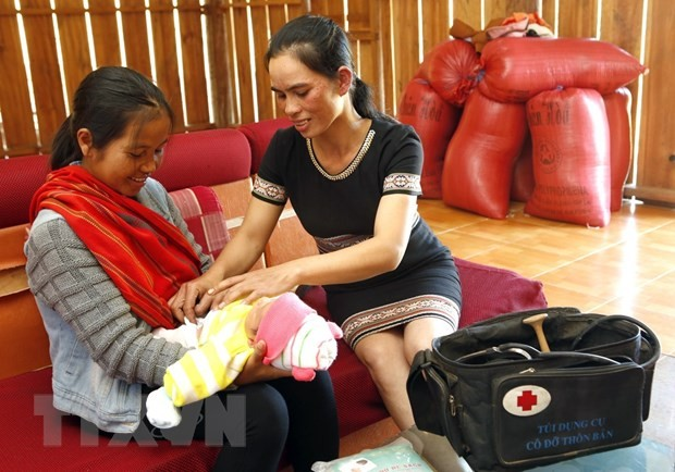 2-mln-USD project to prevent maternal deaths in Vietnamese ethnic minority women - ảnh 1