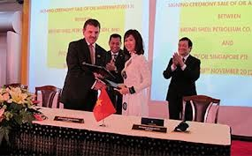 Le président Truong Tân Sang achève sa visite d'Etat au Brunei - ảnh 1