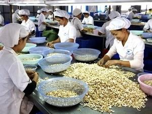 Ouverture du 4è tour de négociations sur l'accord de libre-échange Vietnam-UE - ảnh 1