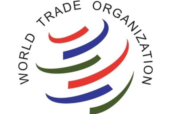 Le Vietnam observe pleinement ses engagements avec l'OMC - ảnh 1