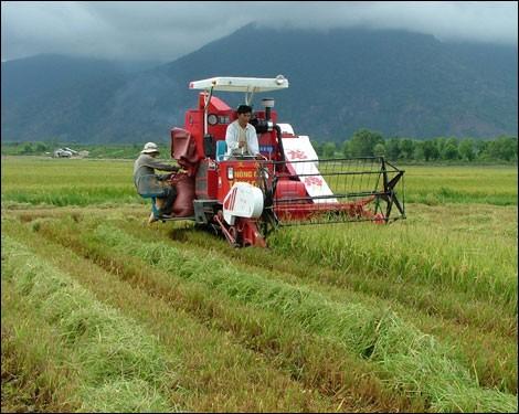 L'agriculture vietnamienne à l'heure de l'intégration: opportunités et défis - ảnh 1