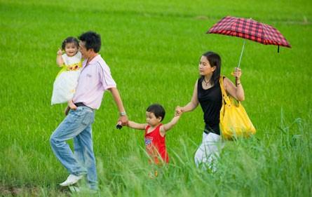 Recueil d'avis pour le projet d'amendement de la loi sur le mariage et la famille - ảnh 1