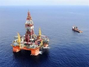 Mer Orientale: la dispora vietnamienne mobilisée     - ảnh 1