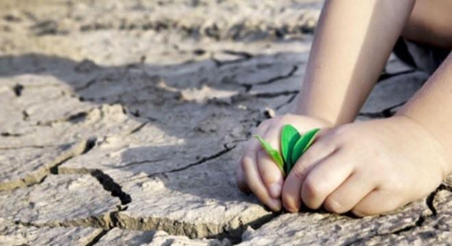 Le Vietnam participe à la lutte mondiale contre le changement climatique - ảnh 1