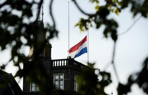 Vol MH17 : hommage aux victimes aux Pays-Bas et en Ukraine - ảnh 1