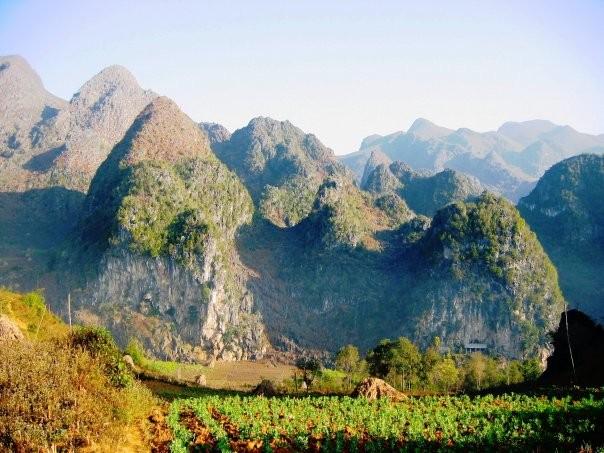 Faire du plateau rocher de Dông Van une destination incontournable - ảnh 1