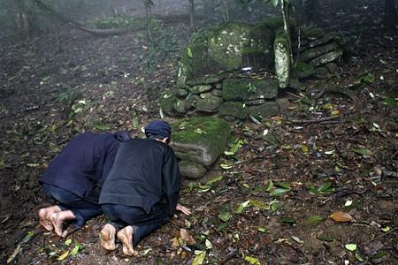 L'hommage au génie de la forêt - ảnh 1