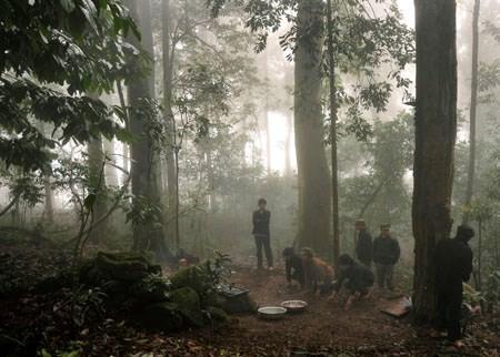 L'hommage au génie de la forêt - ảnh 2