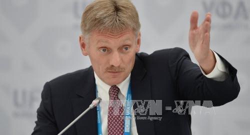 Russie : Aucun accord sur une mission de police dans l'est de l'Ukraine - ảnh 1