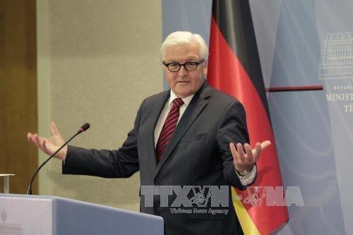Steinmeier pour une levée progressive des sanctions contre Moscou - ảnh 1