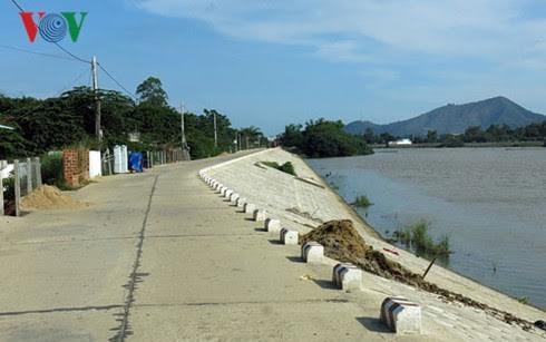 Agriculture: comment le Vietnam s'adapte-t-il au changement climatique? - ảnh 2