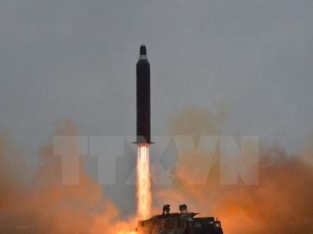 Le JCS condamne le tir de missile Musudan de Pyongyang - ảnh 1
