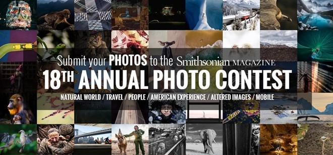 Smithsonian Photo Contest: Grand prix pour une photo ayant pour thème l'étalage d'un vendeur ambulant de poissons au Vietnam - ảnh 1