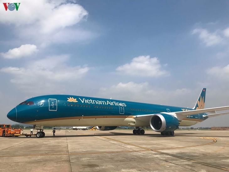 Les vols domestiques et internationaux ont-ils repris au Vietnam? - ảnh 1