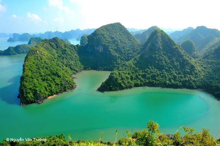 Combien de parcs nationaux y a-t-il au Vietnam? - ảnh 3