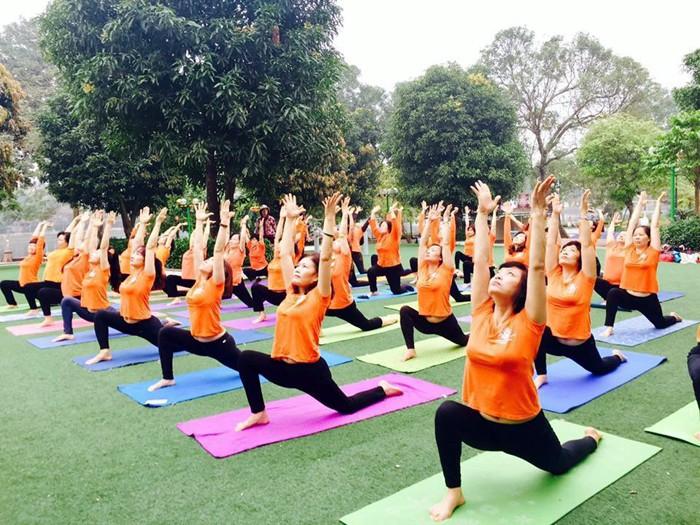 La Journée internationale du yoga est-elle célébrée au Vietnam? - ảnh 1