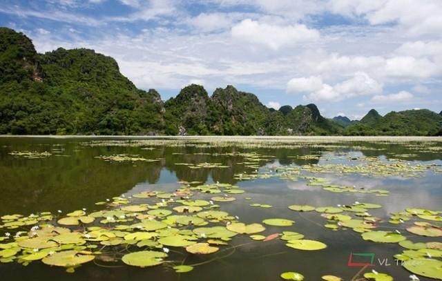 Les Vietnamiens aiment-ils le camping? - ảnh 1