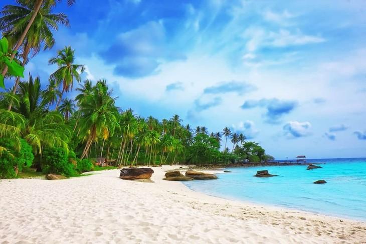 Quand l'île de Phu Quôc accueillera-t-elle les touristes étrangers? - ảnh 1