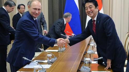 Presiden Rusia, terus melakukan pertemuan tingkat tinggi di sela-sela Olympiade Sochi - ảnh 1