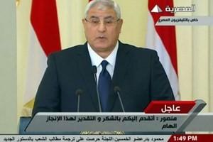 Mesir mengesahkan Undang-Undang tentang Pemilihan Presiden. - ảnh 1