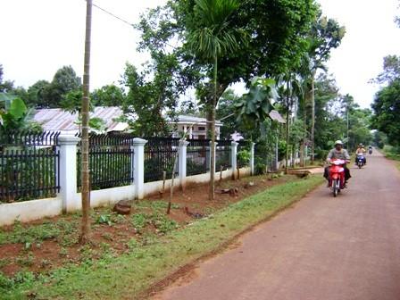 Pengalaman mengerahkan tenaga rakyat dalam pembangunan pedesaan baru di provinsi Dac Lac - ảnh 1