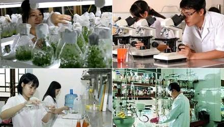 Vietnam memprioritaskan penelitian dan pengembangan ilmu pengetahuan dan teknologi - ảnh 1