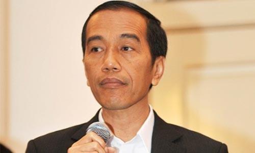 Indonesia mendorong hubungan kerjasama dengan AS, Rusia dan Jepang dalam kerangka APEC - ảnh 1