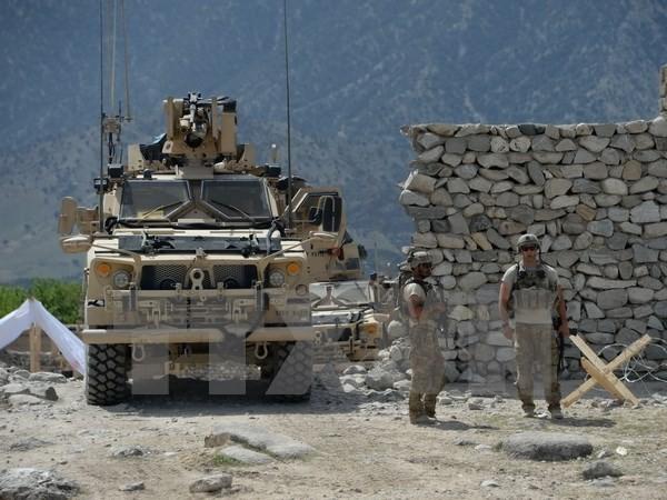 PBB menginginkan solusi politik terhadap Afghanistan-Jerman menegaskan tidak meningkatkan jumlah serdadunya - ảnh 1