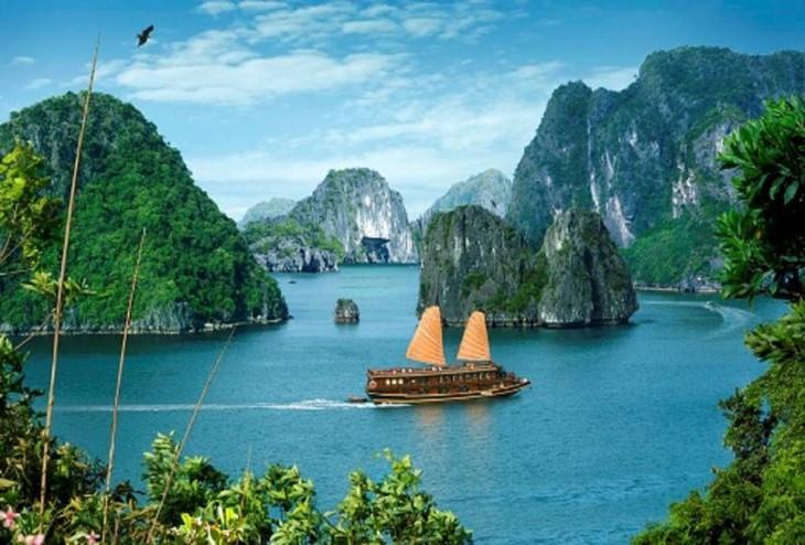 Pekan Laut dan Pulau Vietnam 2018 akan diadakan di Provinsi Quang Ninh - ảnh 1