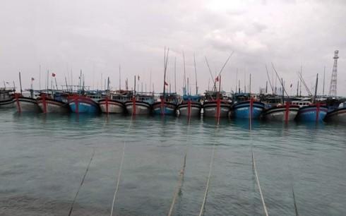 Pintu Air Sinh Ton-Sandaran bagi kaum nelayan di tempat yang penuh kesulitan - ảnh 1