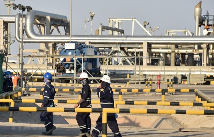 Arab Saudi mengimbau menjamin pemasokan energi untuk membantu pemulihan ekonomi global - ảnh 1