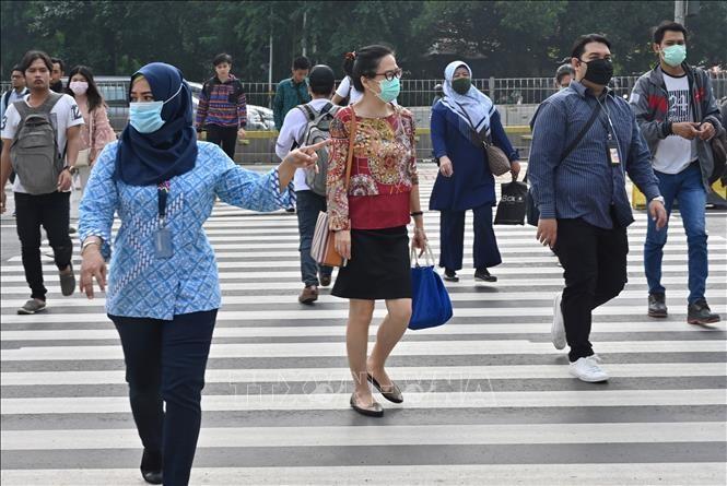 Wabah Covid-19: Indonesia membatalkan penyambutan Hari Raya Idul Fitri - ảnh 1