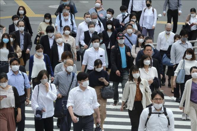 Forum Politik Tingkat Tinggi PBB tentang perkembangan yang berkelanjutan menekankan tema pandemi - ảnh 1