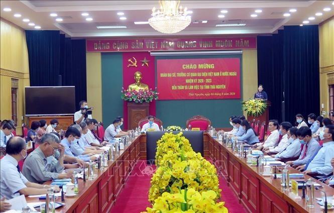 Rombongan para Duta Besar dan Kepala Badan-Badan Perwakilan Viet Nam di luar negeri melakukan kunjungan di Provinsi Thai Nguyen - ảnh 1