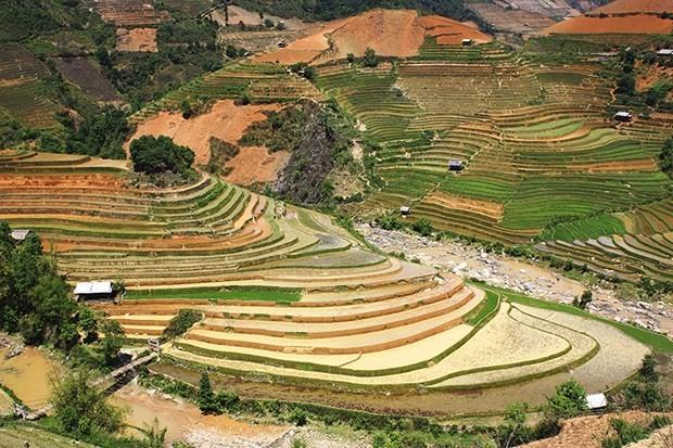 Festival menguak tabir pemandangan alam  terasering Mu Cang Chai - ảnh 1