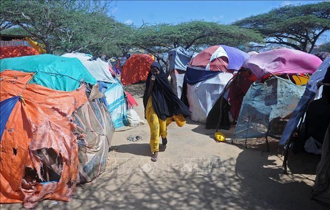 ສະຫະປະຊາຊາດຮຽກຮ້ອງປະຊາຄົມໂລກ ຈົ່ງຊ່ວຍໜູນ Somalia - ảnh 1