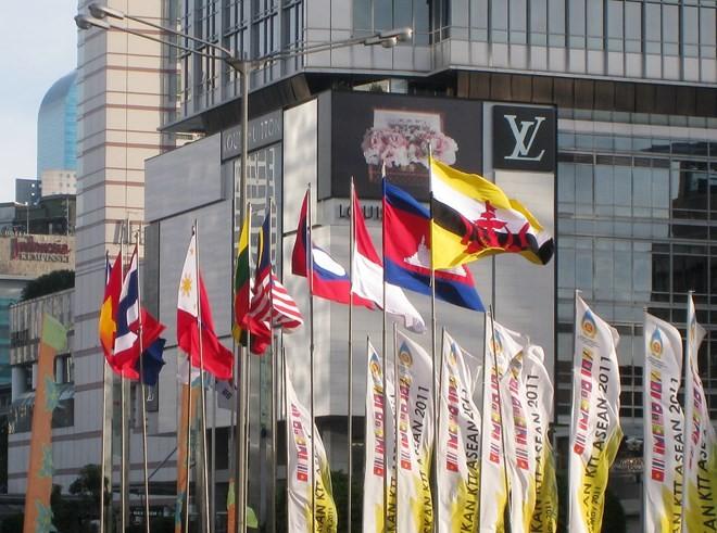 Los diplomáticos de la Asean enarbolan la bandera de la solidaridad - ảnh 1