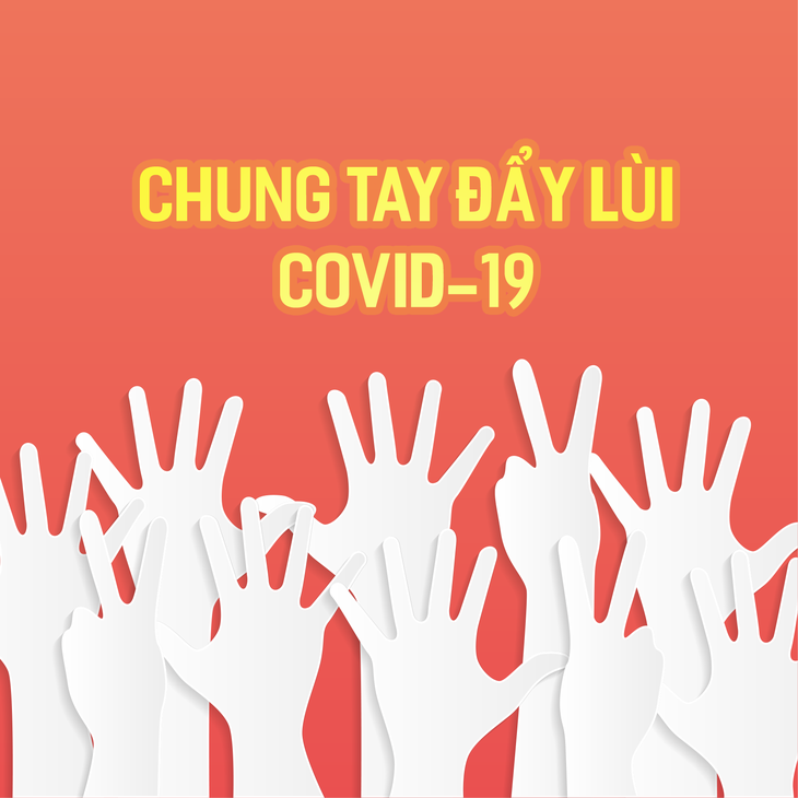 Estamentos vietnamitas junto al Gobierno en la batalla antipandemia - ảnh 1