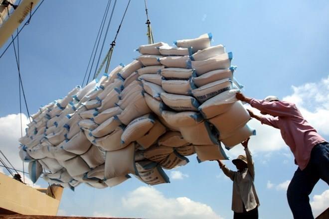 Vietnam podría ser el mayor exportador de arroz en el mundo - ảnh 1