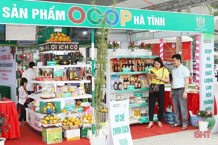 Ha Tinh, provincia destacada en la modernización rural - ảnh 2