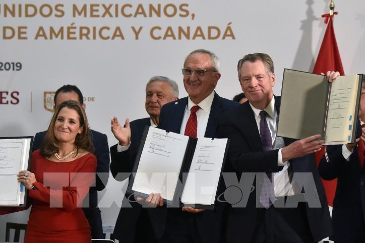 Entra en vigor el nuevo tratado de libre comercio entre México, Estados Unidos y Canadá - ảnh 1