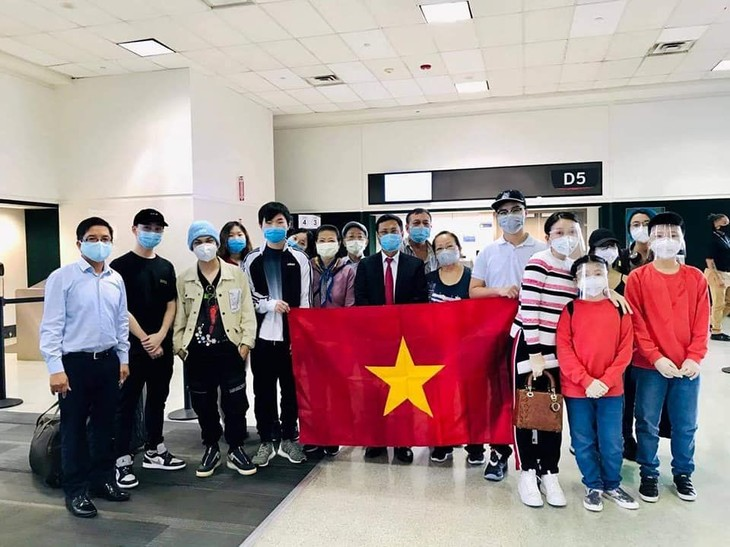 Vietnamitas varados en ultramar continúan siendo repatriados - ảnh 1