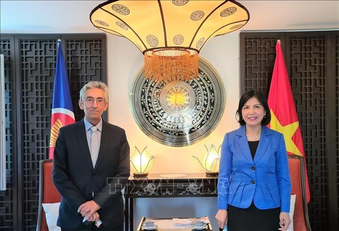 Vietnam promueve cooperación con la Organización Centro Sur - ảnh 1