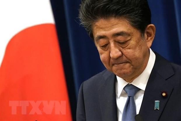 Primer ministro japonés Shinzo Abe renuncia a su cargo  - ảnh 1