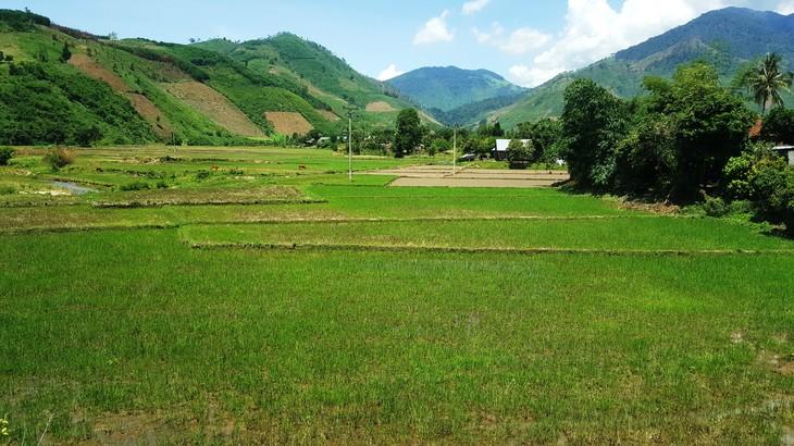 Zona revolucionaria de Krong Bong a la vanguardia del progreso - ảnh 1