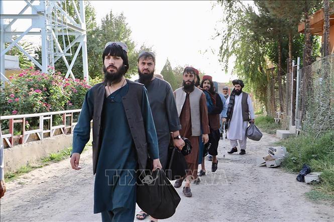 Negociadores talibanes llegan a Qatar en preparación del diálogo de paz con el gobierno afgano - ảnh 1