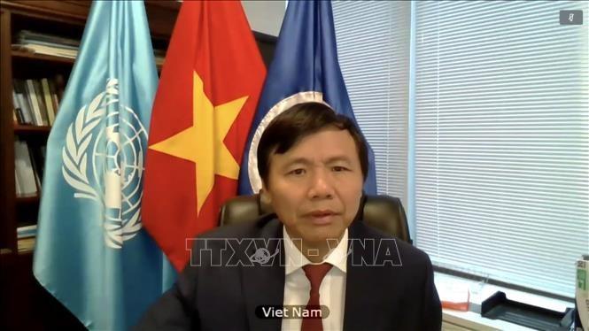 Vietnam promueve el papel de la ley internacional en el mantenimiento de paz y seguridad - ảnh 1