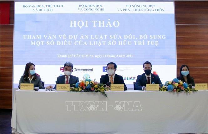 Aportan ideas sobre la Ley de Propiedad Intelectual en Vietnam - ảnh 1