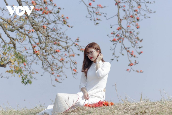El árbol de algodón de seda roja a la orilla del río Thuong, fuente de inspiración de artistas - ảnh 11