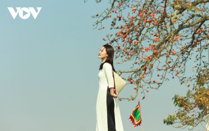El árbol de algodón de seda roja a la orilla del río Thuong, fuente de inspiración de artistas - ảnh 13